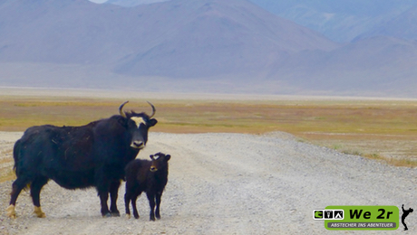 we2r_tadjikistan_motorrad_21